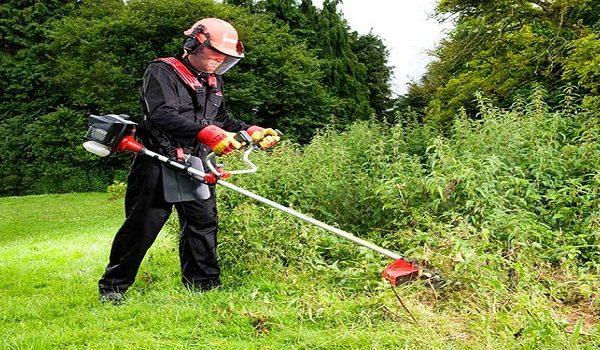 Comment se débarrasser des herbes encombrantes chez soi ?